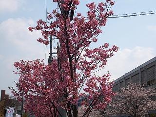 2012-04-08_0002.jpg